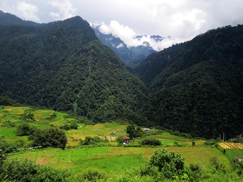 हिमालयी जैवविविधता