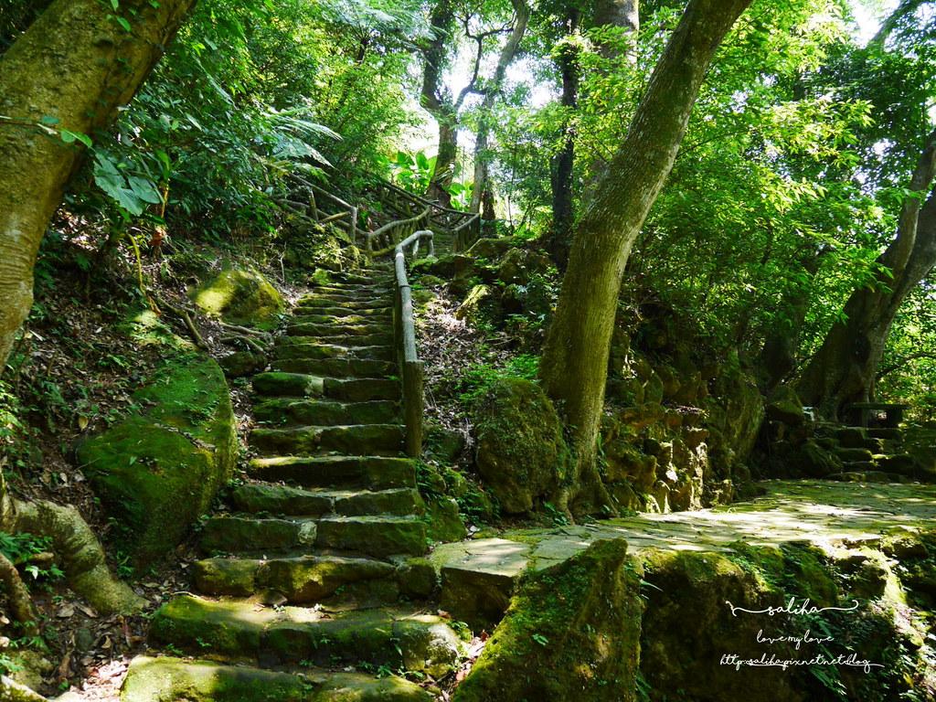 陽明山花鐘公園附近景點 (1)