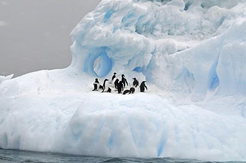 Antarctica. From 5 Perfect Destinations for a Memorable Getaway