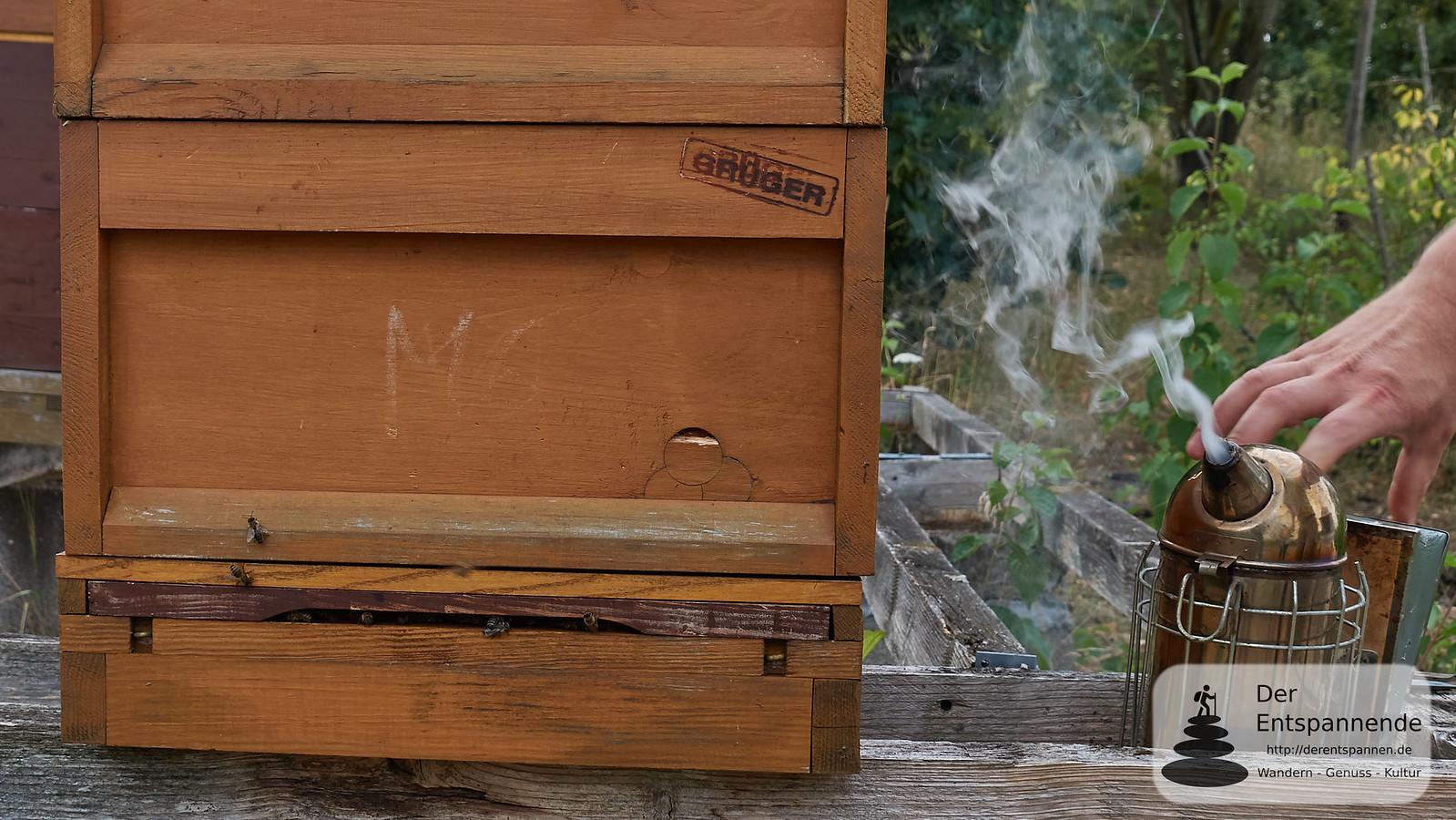 Rauch alarmiert Bienen, lässt sie Fressanfall bekommen