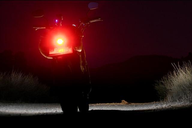 Chotacabras y moto
