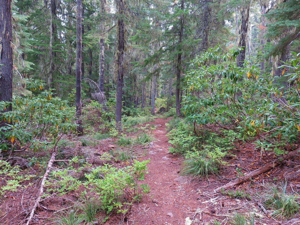 Blair Lake Trail
