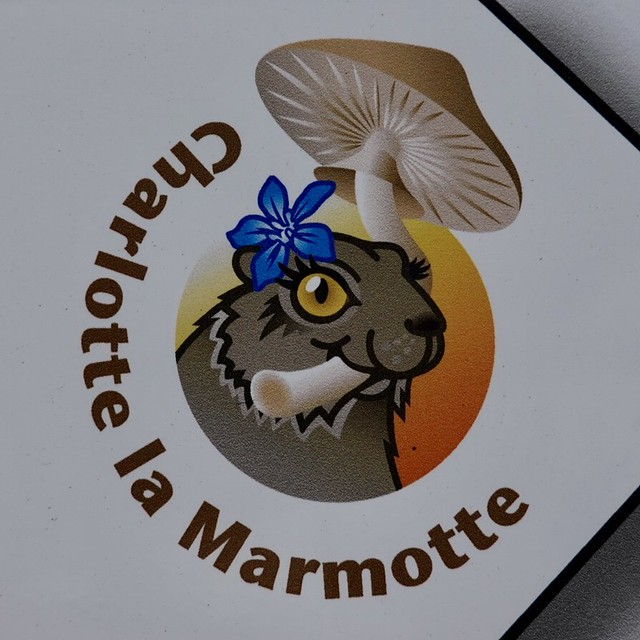 Charlotte the marmot