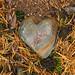 Heart of stone_Pellinki