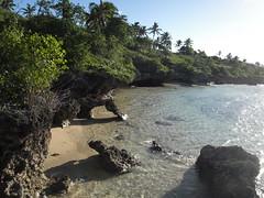 Tonga | 2013.06.14 | P6147654
