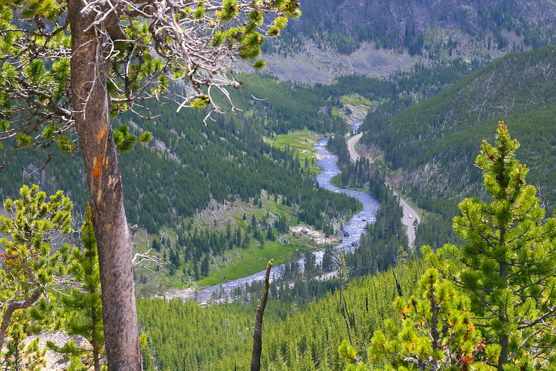 IMG_8886 Gibbon Canyon