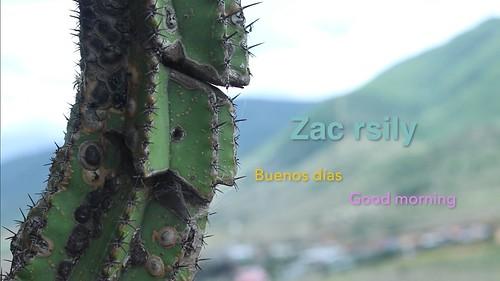 Lessons in Zapotec (San Jerónimo Tlacochahuaya): Zac rsily = Buenos días = Good morning = @dizhsanabani
