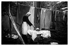la lavandaia