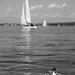 Bodensee aka Lake Constance