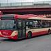 Halton Transport MIG8165