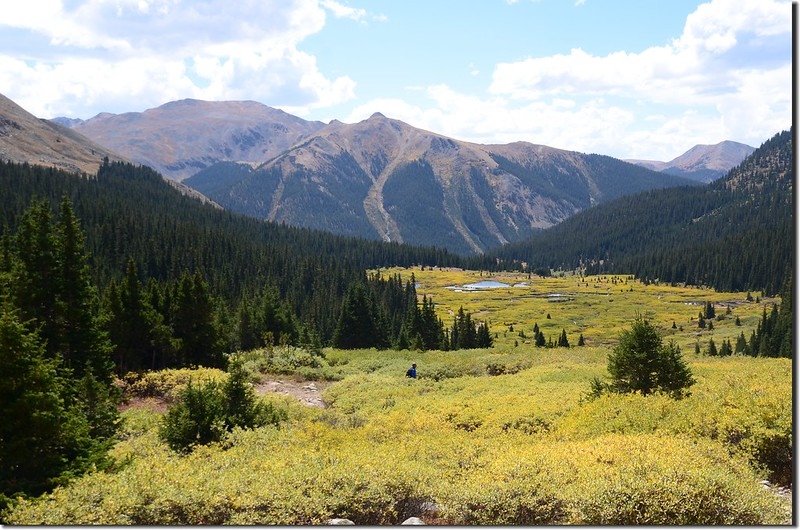 Looking back down the valley and beaver ponds below (6)