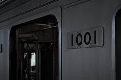 IMGP1491