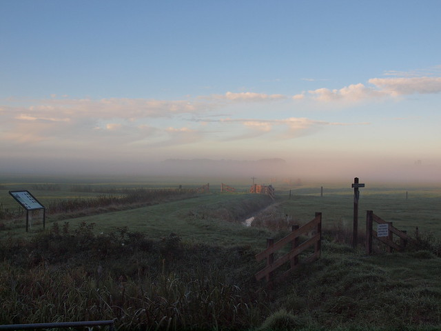 Nebel in Sloten