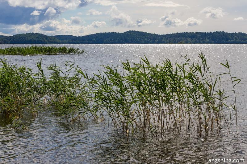 Залив Ораванселькя, Ладожское озеро, Карелия