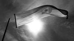 Banner flag austria tirol