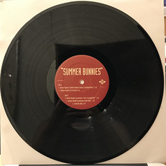 R. KELLY:SUMMER BUNNIES(RECORD SIDE-B)