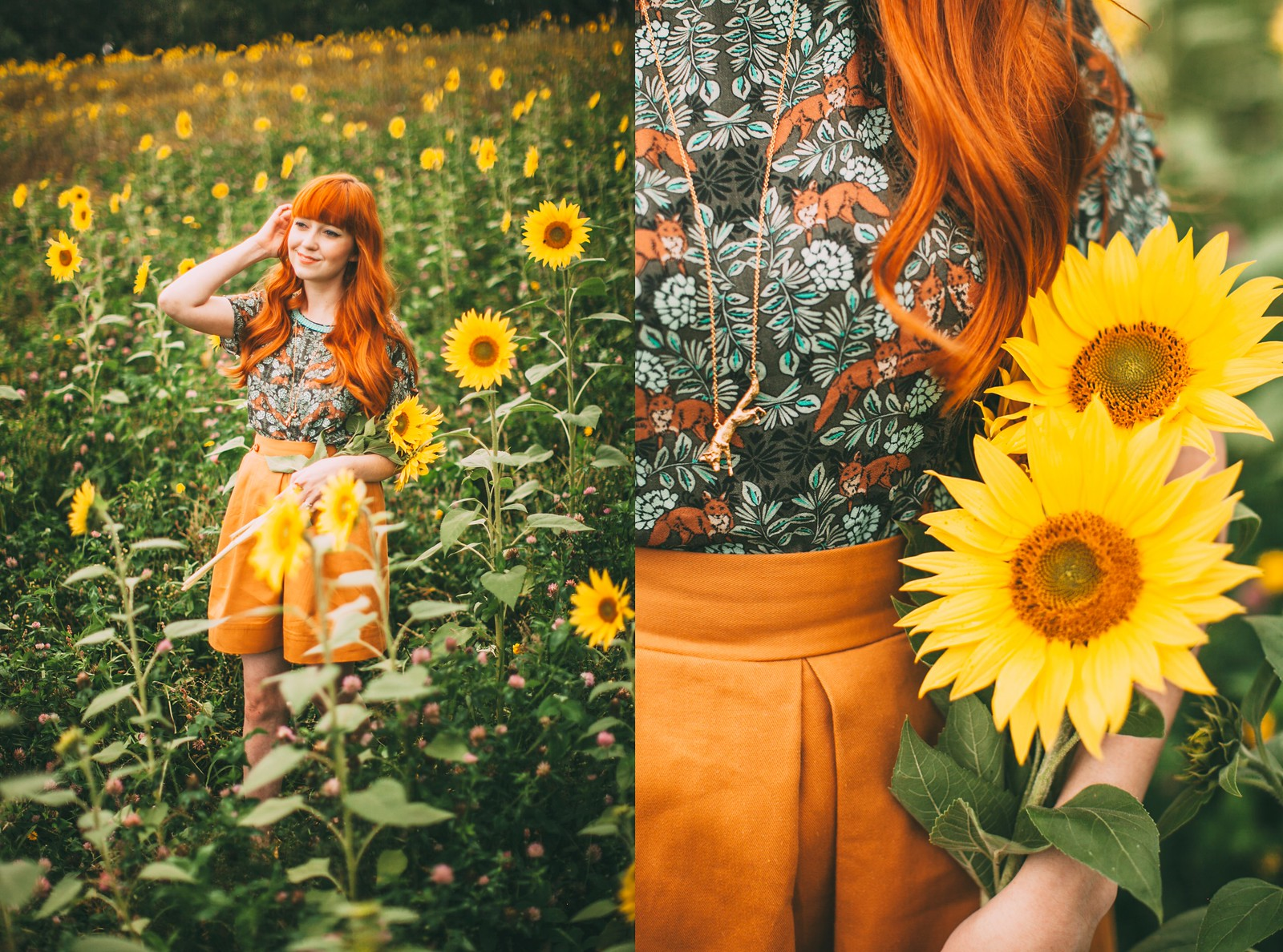sunflower field-9-side