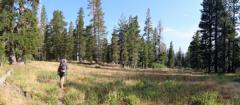The Rubicon Trail crosses a small meadow just east of Lake Lois