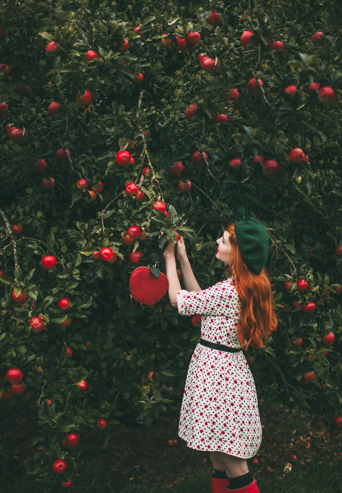 cath kidston apples-23