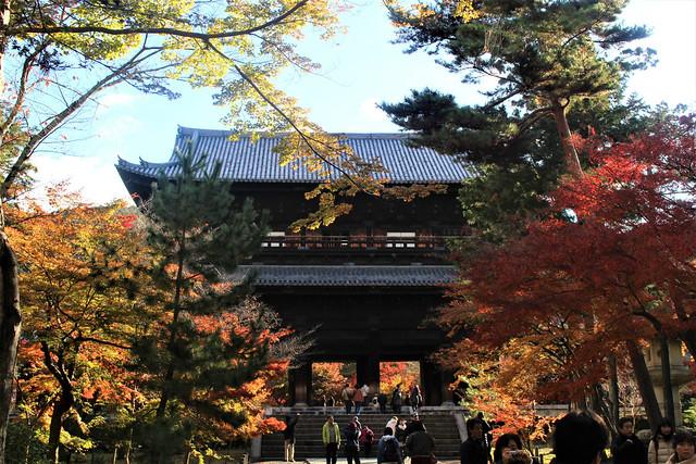 daimon-koyo034