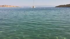 Bodrum morning swim.