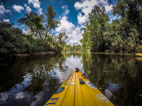 French Broad River - Rosman to Island Ford-98