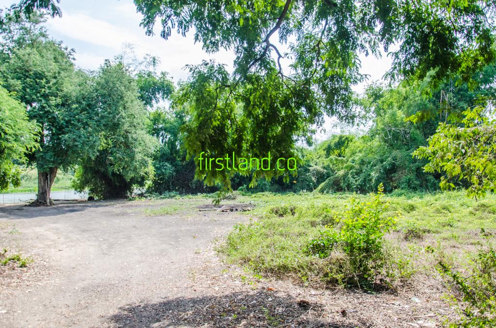 ขายที่ดินติดแม่น้ำ ขนาด 1 ไร่ อ.เมือง จ.สุพรรณบุรี