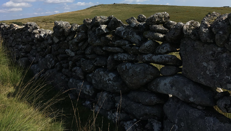 Wall and Thornworthy Tor