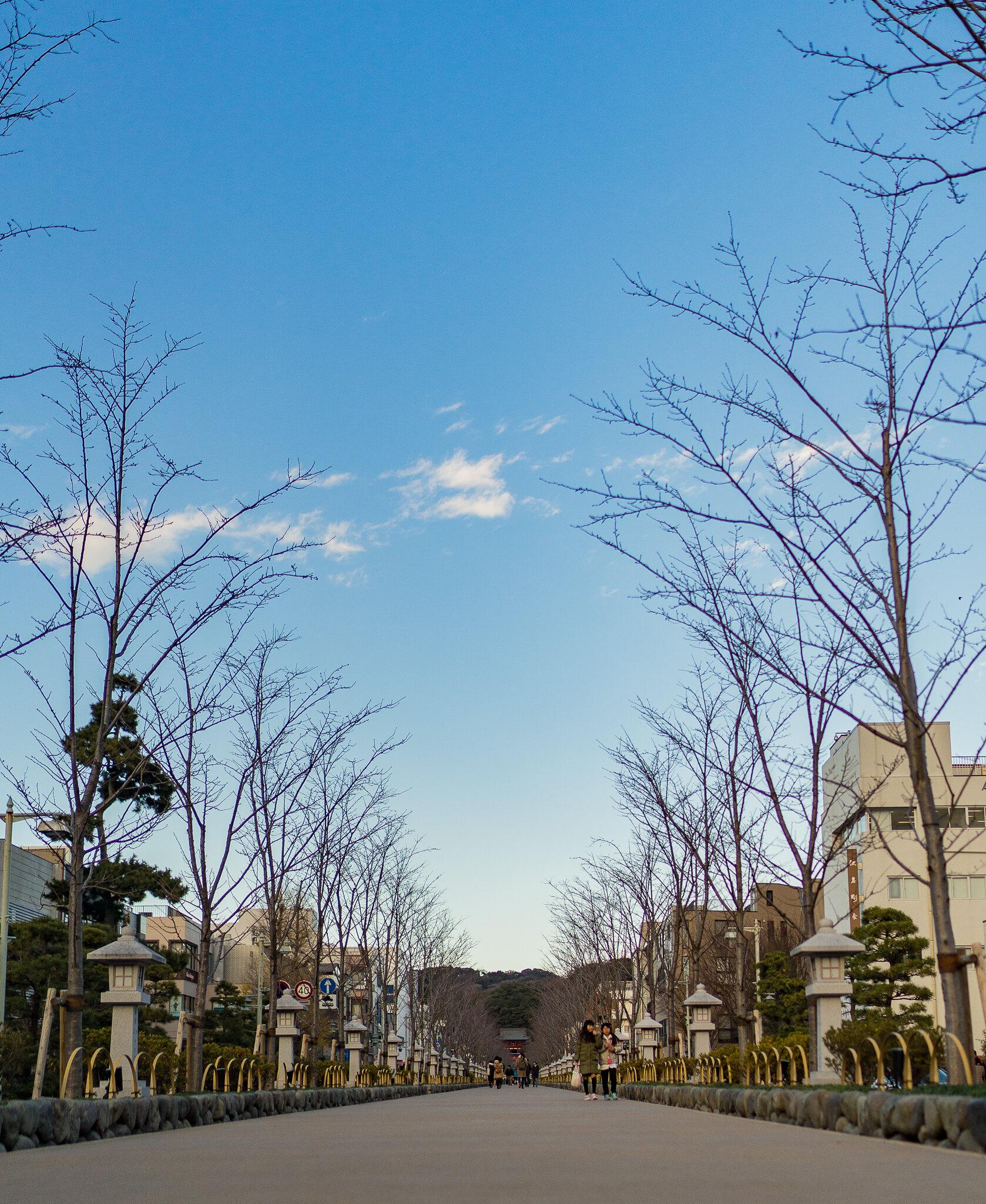 Facing the Kamakura Shrine Gates