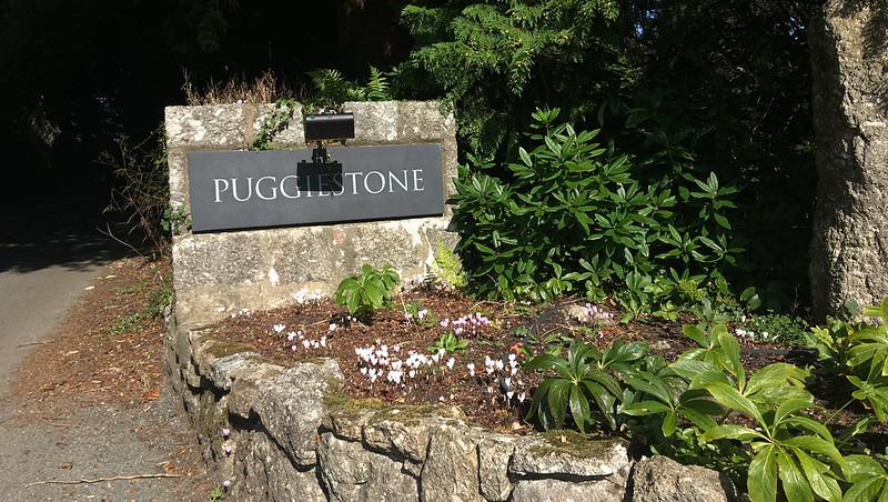 Puggiestone