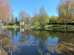 Gorses - Plan d'eau (bourg) - Photo of Montet-et-Bouxal