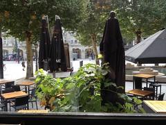 Caf� Am�ricain, Amsterdam