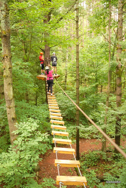 Treetop trekking Ganaraska games