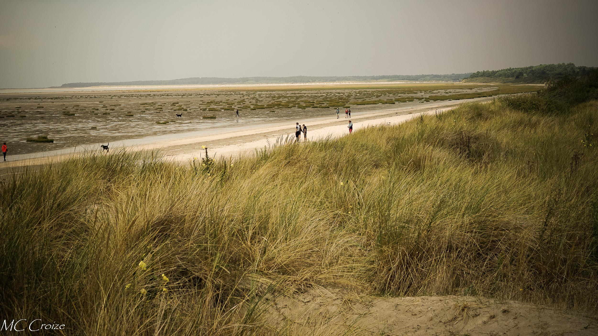 Promenade dans les dunes 43806362645_6b460f0066_o