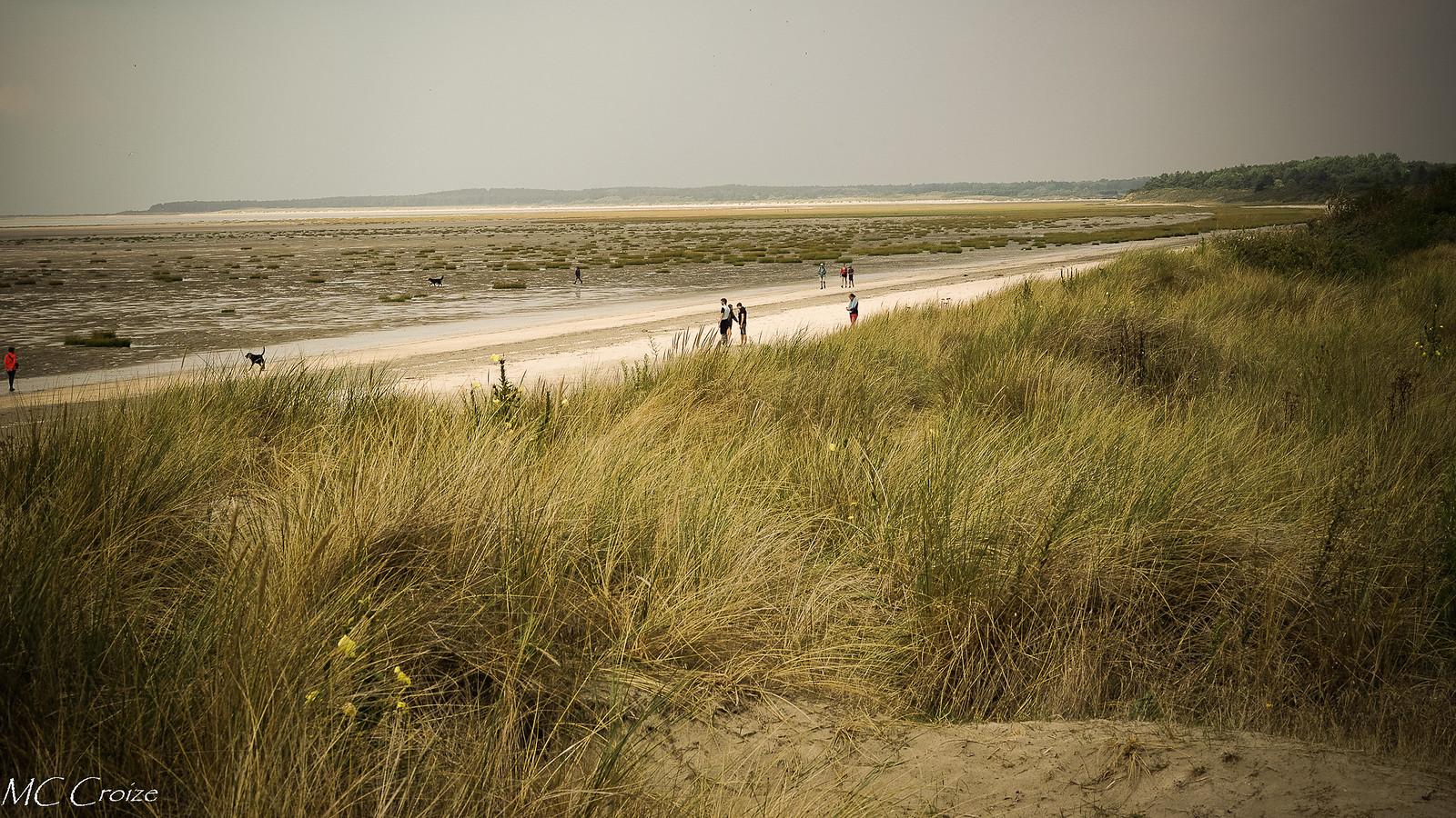 Promenade dans les dunes 43806362645_c145847c90_h