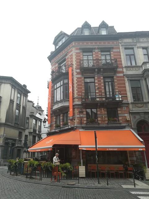 Le perroquet Bruselas