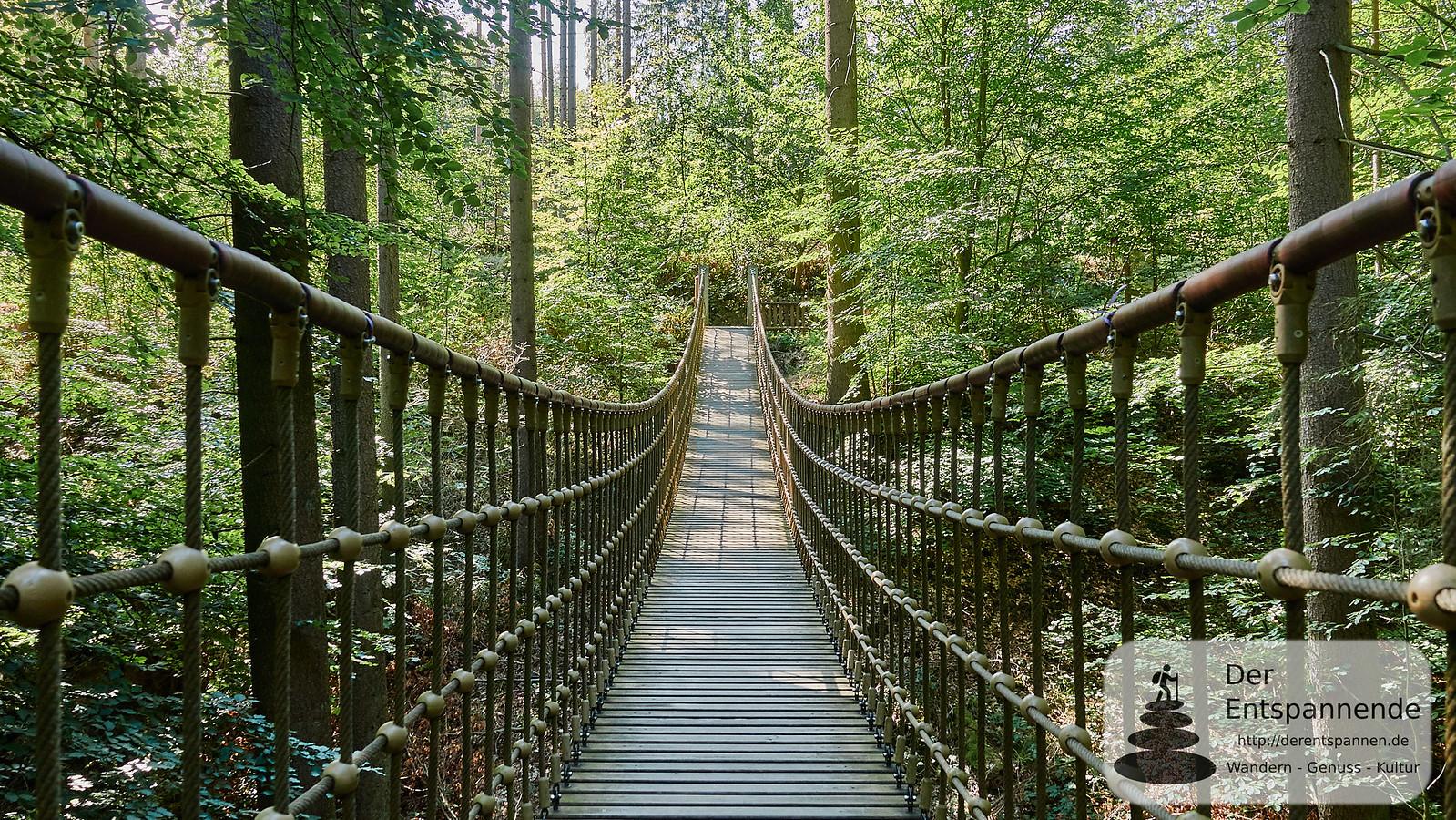 Hängebrücke im Binger Wald, Nähe Forsthaus Heiligkreuz