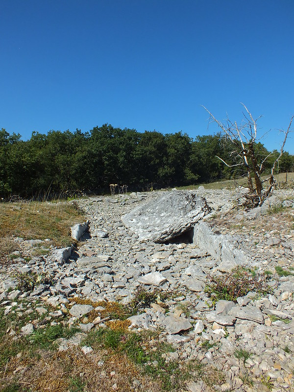 Gréalou - Dolmen du Pech-Laglayre 3