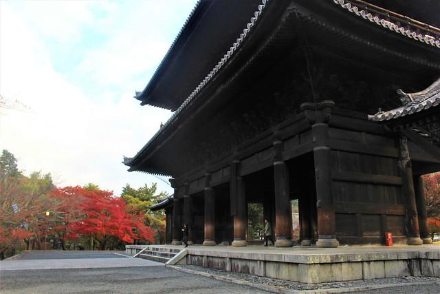 daimon-koyo006
