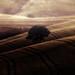 a d a g i o  (su un tappeto di silenzi) by swaily ◘ Claudio Parente