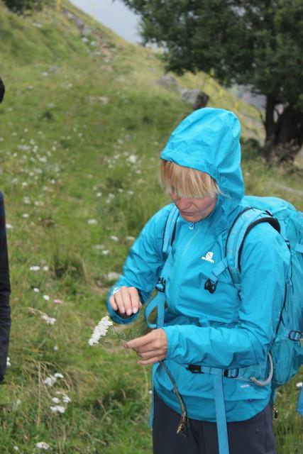 Hiking with Uta