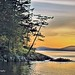 Washington Boat Cove 6 by Ted S. Photography