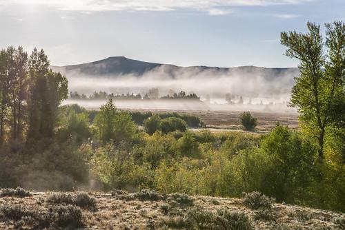 backlight fog gunnisonrivercanyon mist morning sage sunrise