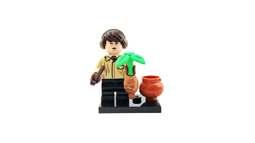 LEGO Harry Potter and Fantastic Beasts Collectible Minifigures (71022) - Neville Longbottom