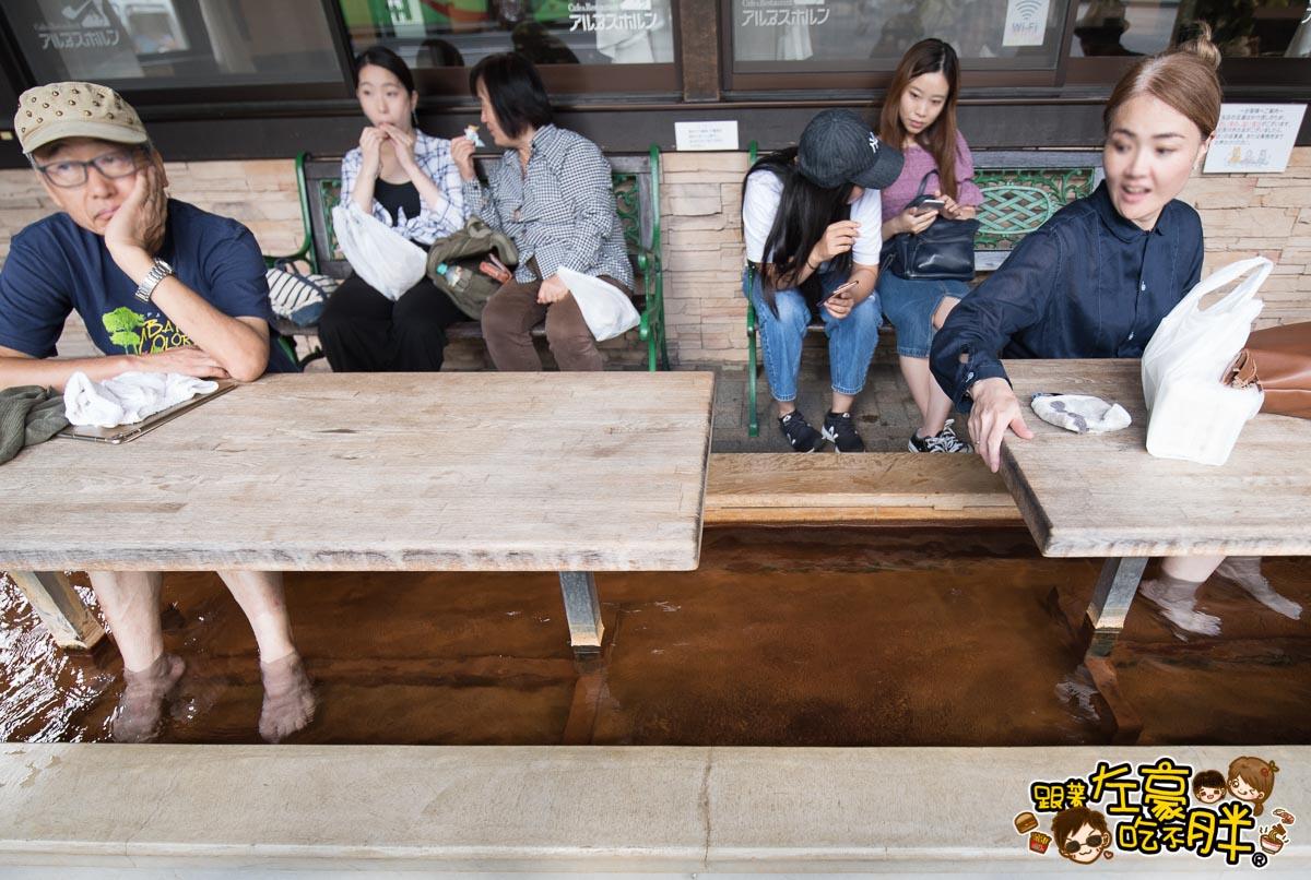 日本名古屋 平湯休息站 -昇龍道票卷-11