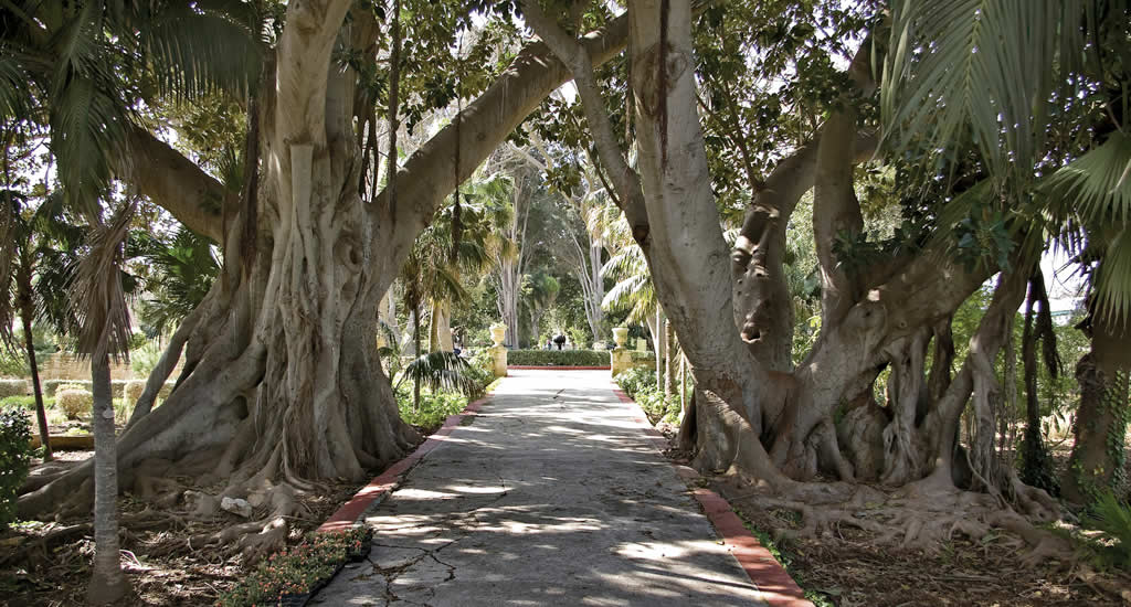 Game of Thrones op Malta: San Anton Gardens | Malta & Gozo