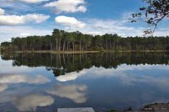 Lac de Clarens_8378 - Photo of Pompogne