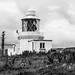L2018_3308 - St Ann's Head Lighthouse - Pembrokeshire