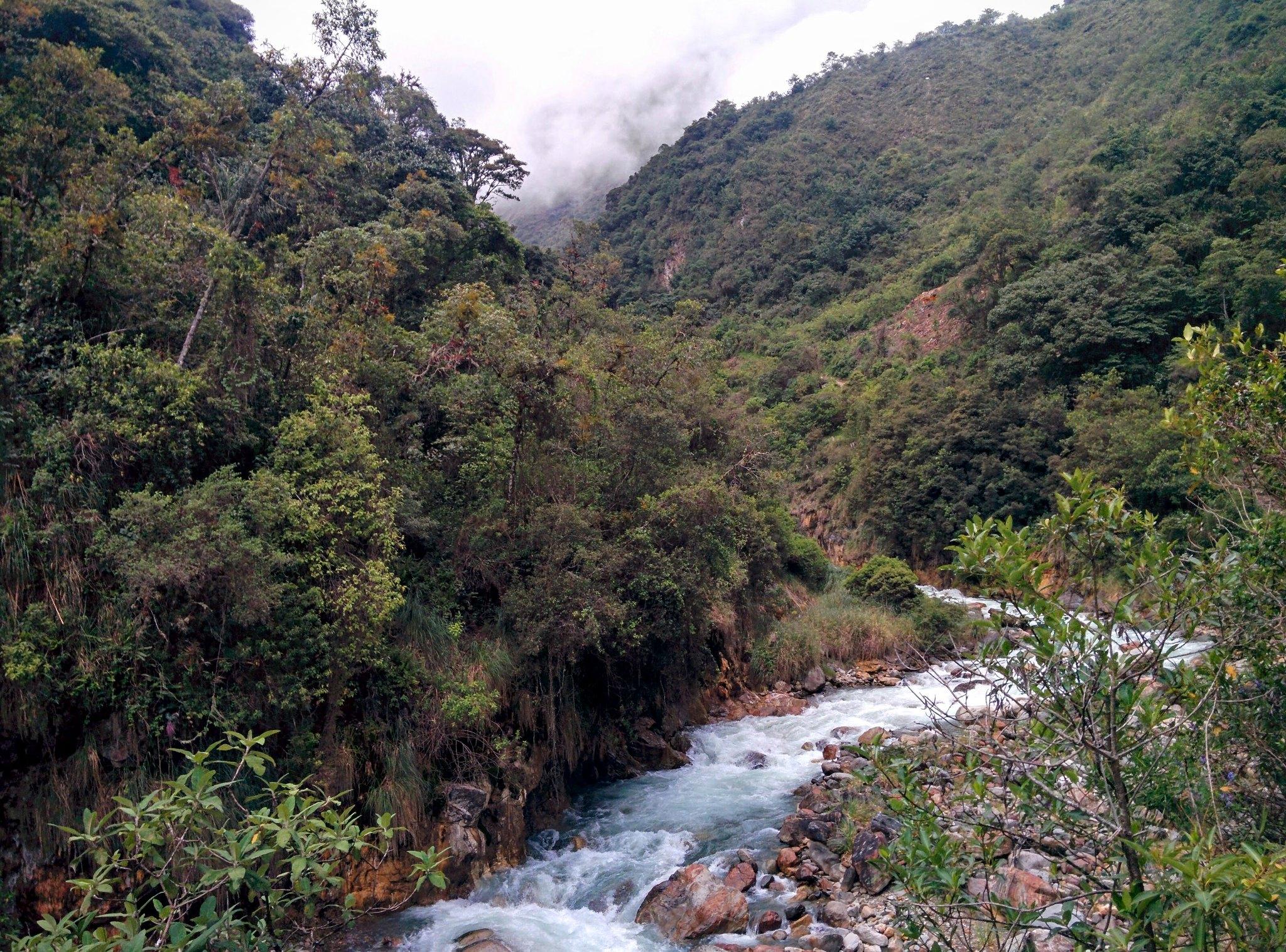 A river running through the jungle