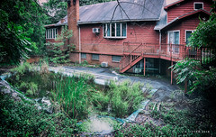 Swimming Pool at Abandoned Animal Hospital